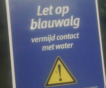 Juli: WAARSCHUWING: Blauwalg aangetroffen op de Volgermeer